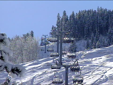 chair-lift carrying skiers to the top of the ski run in vail, colorado. - pinaceae stock videos & royalty-free footage