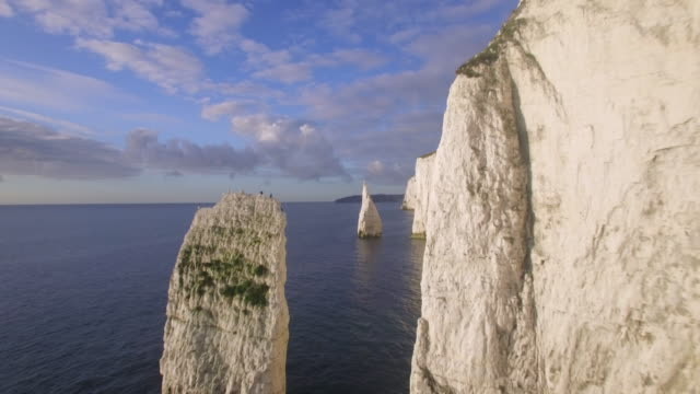 chalk cliffs near old harry rocks on the dorset coast, isle of purbeck, dorset, united kingdom - rock stock videos & royalty-free footage