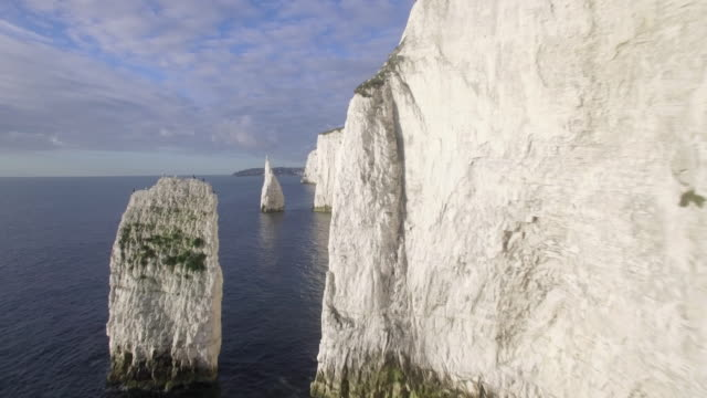 chalk cliffs near old harry rocks on the dorset coast, isle of purbeck, dorset, united kingdom - kreidefelsen stock-videos und b-roll-filmmaterial