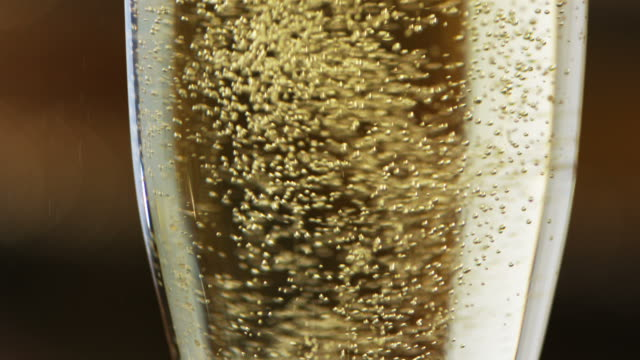 Champagne Bubbles in Glass - High Speed Video