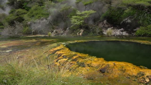 vídeos de stock e filmes b-roll de champagne pool - piscina térmica