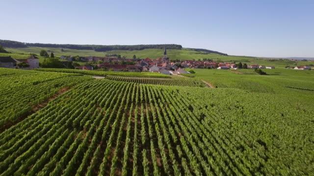 vidéos et rushes de champagne region, aerial view of chamery - village