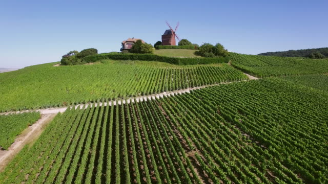 champagne region, aerial view of windmill of verzenay - ブドウ畑点の映像素材/bロール
