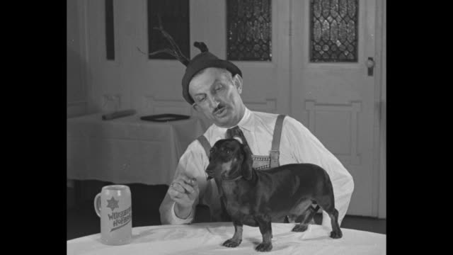 3 champion dogs on table / man in lederhosen speaking with German accent introduces one dachshund talks about trick dog can do picks up beer stein...
