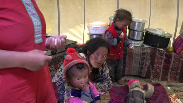 changpa tribe family inside their tent, changtang, ladakh, india - männliches baby stock-videos und b-roll-filmmaterial