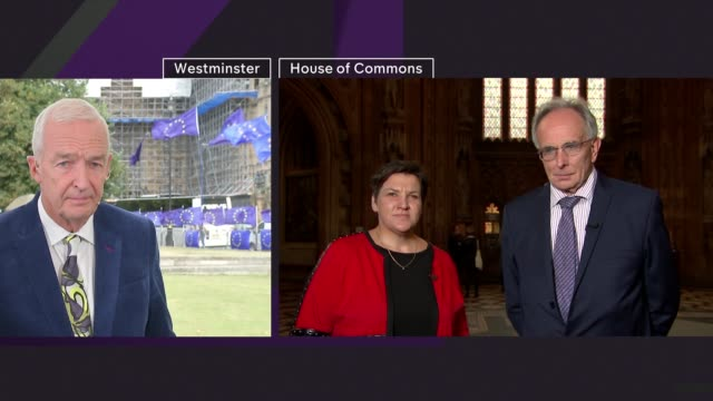 channel 4 news noon pab; england: london: westminster: ext live jon snow and paul mcnamara sot reporter to camera int tonia antoniazzi mp live... - peter snow stock videos & royalty-free footage