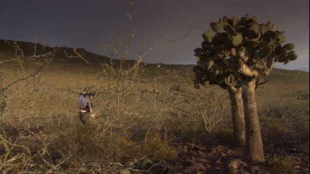 charles darwin carries a firearm as he walks past a cactus tree. available in hd. - チャールズ・ダーウィン点の映像素材/bロール
