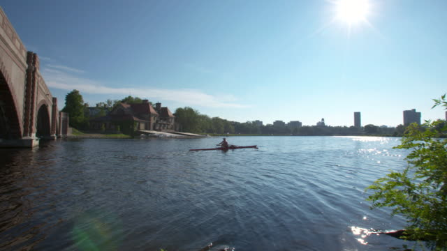 charles river boston rower - charles river stock videos & royalty-free footage