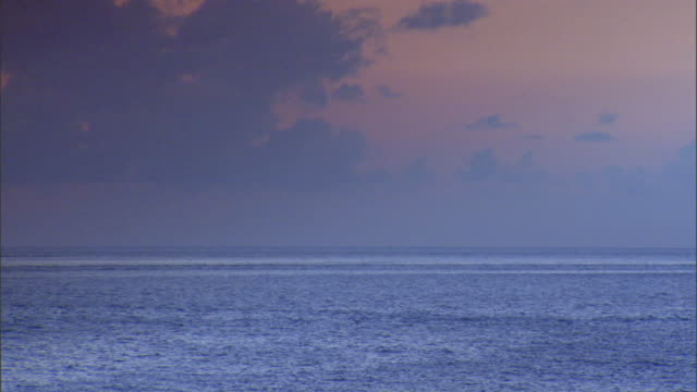 XWS Charleston Harbor Atlantic Ocean water skyline birds flying through frame blue gray clouds in pink sky No people