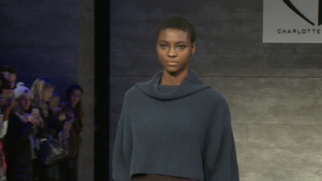 clean charlotte ronson fall 2015 mercedesbenz fashion week at the pavilion at lincoln center on february 13 2015 in new york city - event capsule stock videos & royalty-free footage