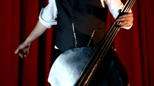 charming performance of elegant double bass player - punk music stock videos & royalty-free footage