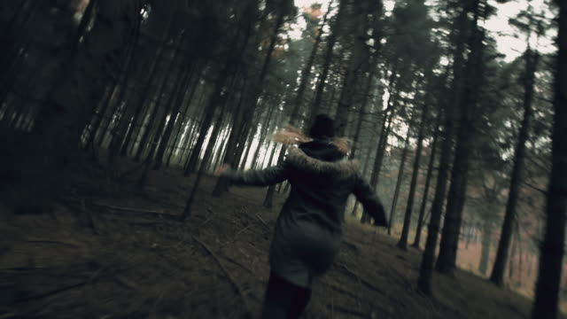 pov chasing a young woman through the forest - spooky stock videos & royalty-free footage