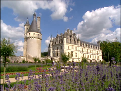chateau chenanceau and gardens with purple flowers in foreground blue sky above loire - ワスレナグサ点の映像素材/bロール