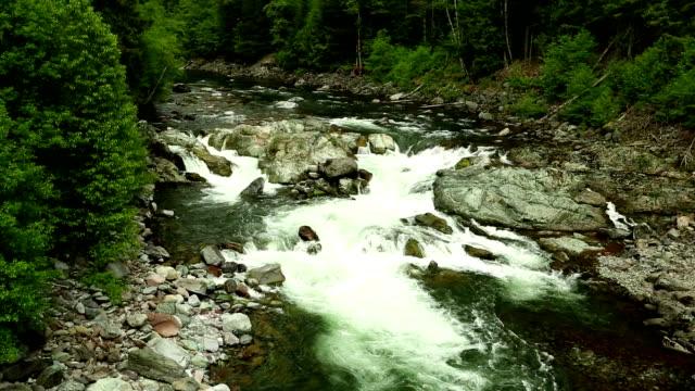 cheakamus river squamish whistler - garibaldi park stock videos & royalty-free footage