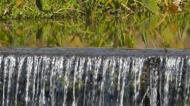 vídeos y material grabado en eventos de stock de comprobar presa - energía hidroeléctrica