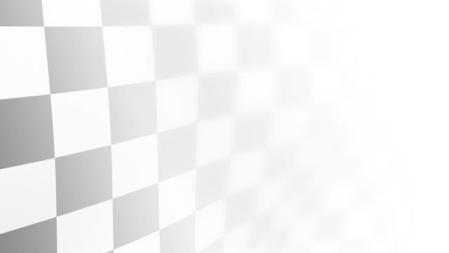 Checkered Flag on White