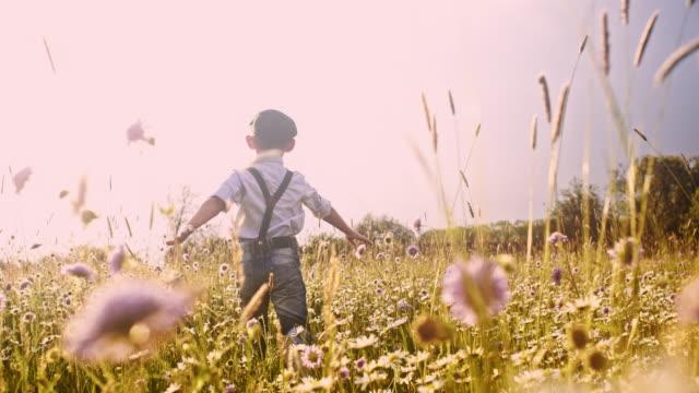 両腕と草原を走っている slo 模陽気な少年 - 帽子点の映像素材/bロール