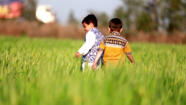 Cheerful children playing in green field