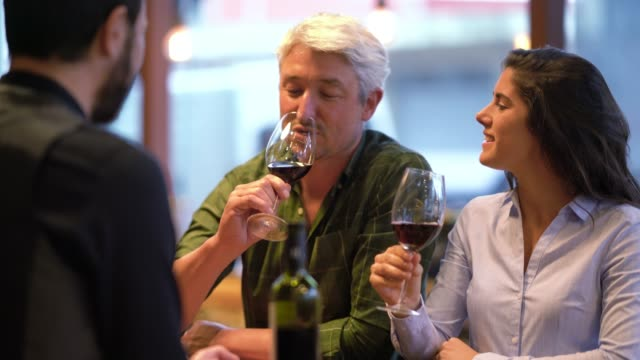 cheerful couple at a wine tasting trying red wine and talking to the wine steward all looking happy - argentina stock videos & royalty-free footage