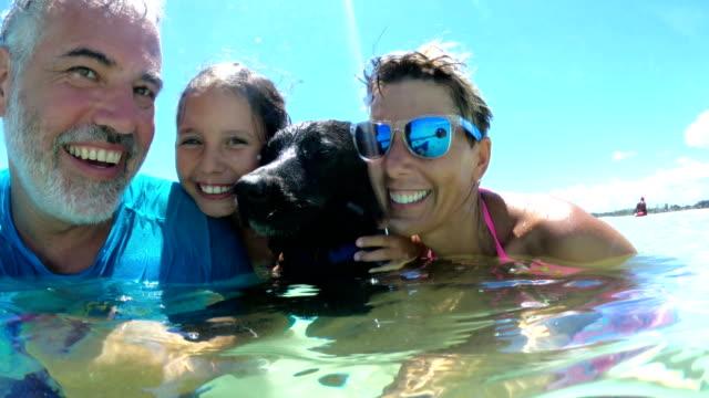 vídeos de stock, filmes e b-roll de família alegre que aprecia no mar com seu cão em férias de verão - dono