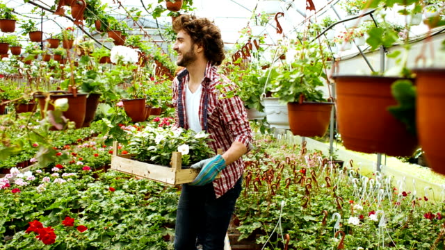 vidéos et rushes de hd: enthousiaste fleuristes transporter des cages plein de fleurs. - fleuriste