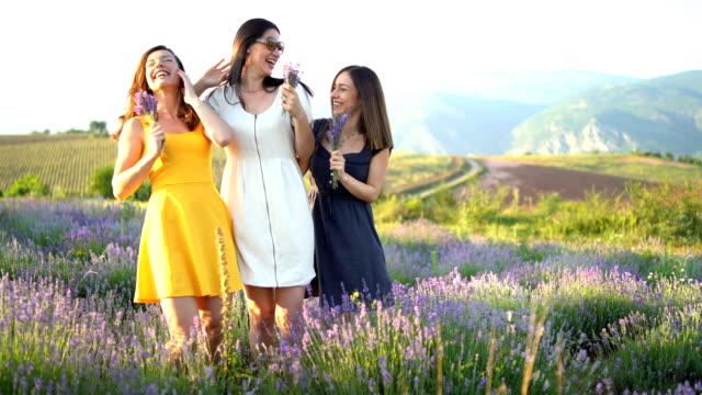 fröhliche freunde im lavendelfeld - three people stock-videos und b-roll-filmmaterial