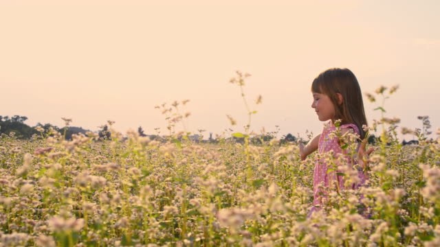 SLO MO Cheerful girl in the middle of buckwheat field