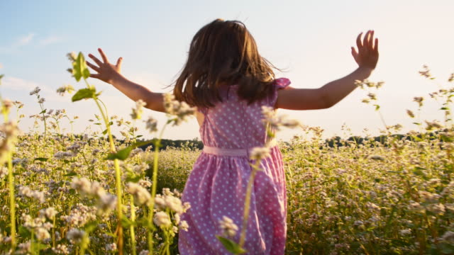slo mo cheerful girl running in the buckwheat field - buckwheat stock videos & royalty-free footage