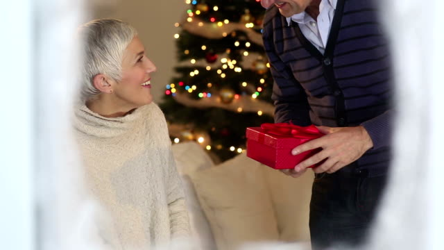 Cheerful mature couple have Christmas dinner