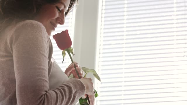 cheerful mid adult woman smelling the rose her husband gave her for valentine's day - single rose stock videos & royalty-free footage