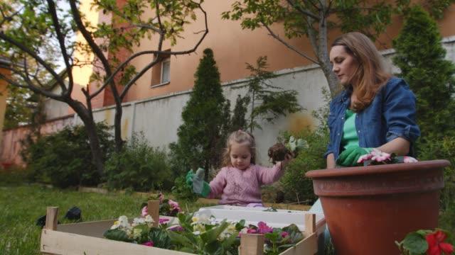 vidéos et rushes de mère gaie en pot fleurs avec sa fille mignonne d'enfant en bas âge - gant de jardinage