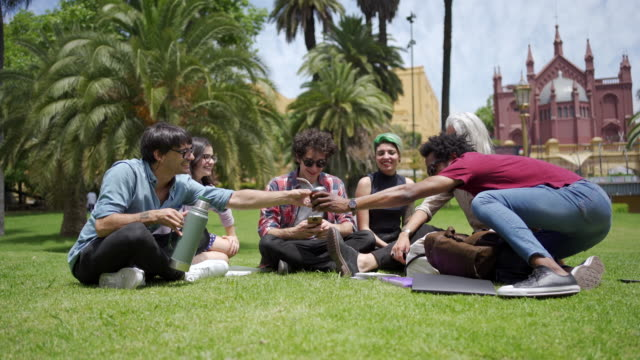 cheerful students drinking yerba mate and enjoying relaxing at a park - yerba mate stock videos & royalty-free footage