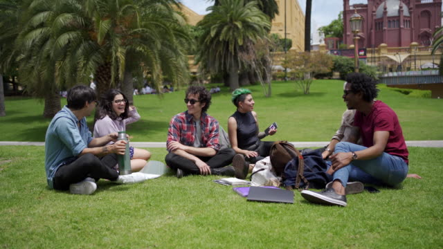 cheerful students laughing while spending time together on campus - yerba mate stock videos & royalty-free footage