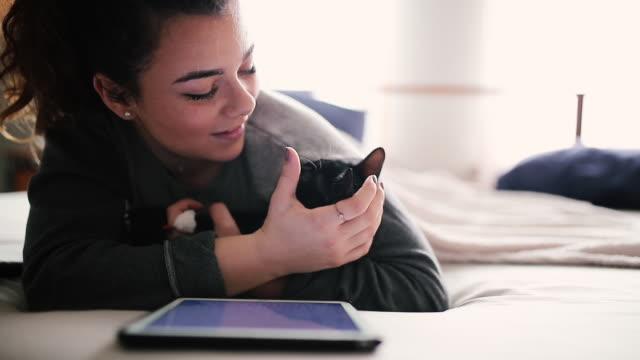 vídeos y material grabado en eventos de stock de mujer alegre ama a su gato - herramientas profesionales