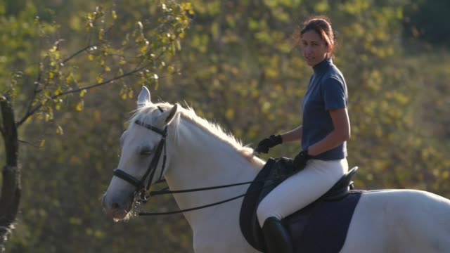 vidéos et rushes de femme joyeuse circ. white horse ranch - femme soumise