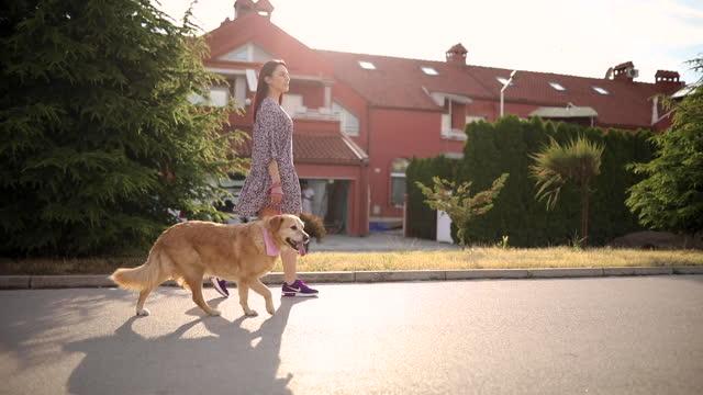 fröhliche junge hundebesitzerin, die an der leine ihren niedlichen hund an der leine geht, während des sonnigen tages in der nachbarschaft - haustierleine stock-videos und b-roll-filmmaterial