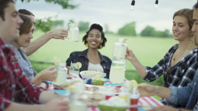 cheers to that - picnic stock videos & royalty-free footage