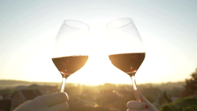 cheers! - wine stock videos & royalty-free footage