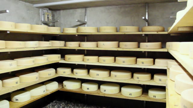 ms pan cheese blocks being stored on shelves inside cellar / lenggries, bavaria, germany - cheese stock videos & royalty-free footage