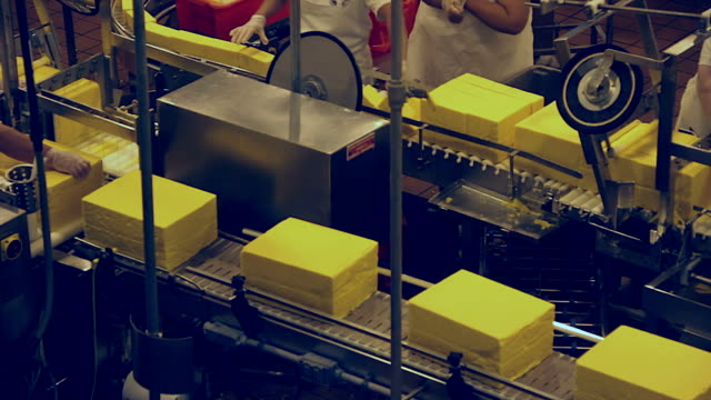 Cheese Production Line - Cutting Station