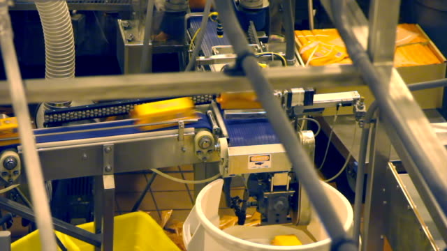cheese production line - packaging machine - food processing plant stock videos and b-roll footage