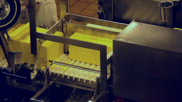 Cheese Production Line - Slice Station Close-up