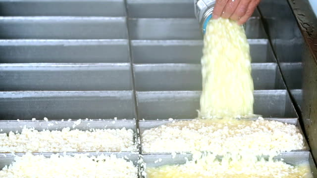 Cheesemaker Filling Cheese Curds in Moulds