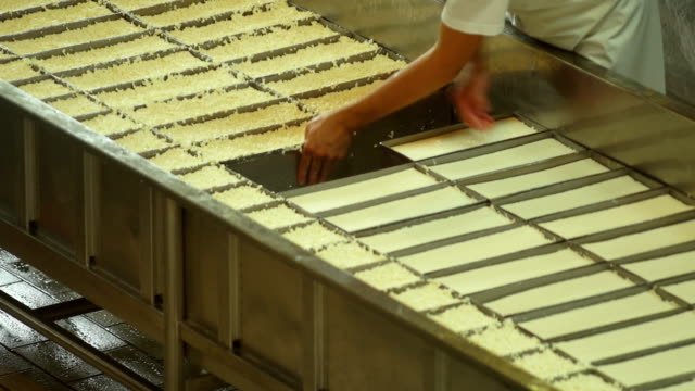 Cheesemaker Turning the Curd Filled Moulds