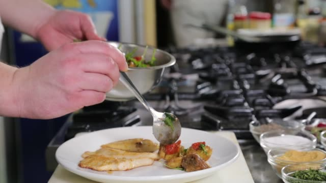 chef serving chicken meat dish - food state stock videos and b-roll footage