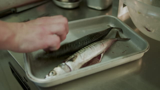 chef turning fish on tray - kingsand video stock e b–roll