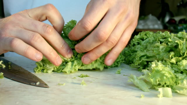 chefs hands cutting a fresh green salad leaf. - green salad stock videos & royalty-free footage