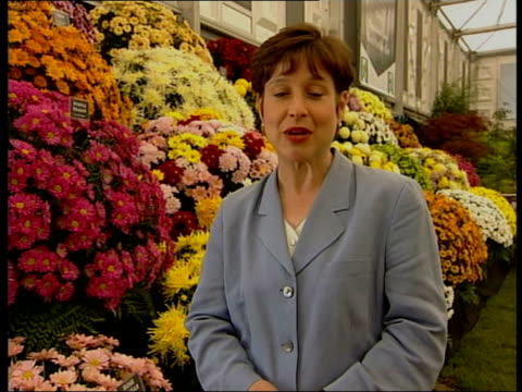 Chelsea Flower Show 2001 ITN INT i/c Woman blowing flower with hairdryer Water feature on display CSs Flower blooms NAT