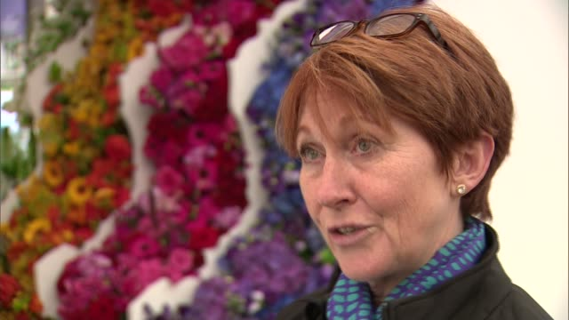 chelsea flower show 2016: display of handmade poppies at royal hospital chelsea; england: london: chelsea: int various shots people looking at flower... - festival dei fiori di chelsea video stock e b–roll