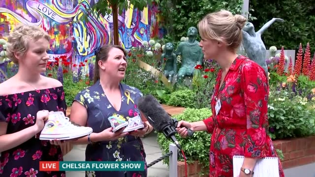 chelsea flower show 2018 preview; england: london: chelsea: royal hospital chelsea: ext sarah white live interview sot olivia taylor live interview... - chelsea flower show stock videos & royalty-free footage